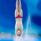Diver Champion (Panning)